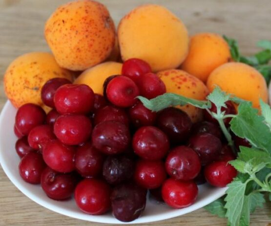 Cranberry Apricot Cooler
